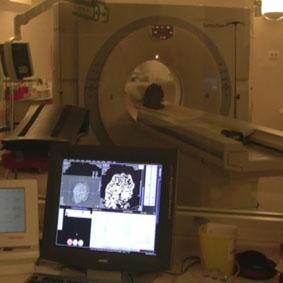 tomographie d'une termitière en cours à l'hôpital de Rangueil à Toulouse